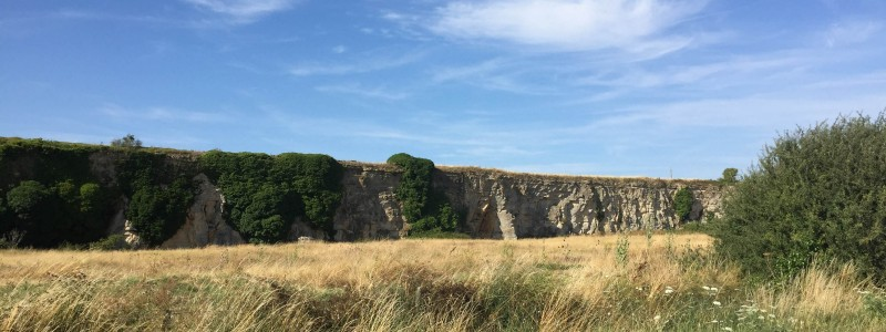 la roche