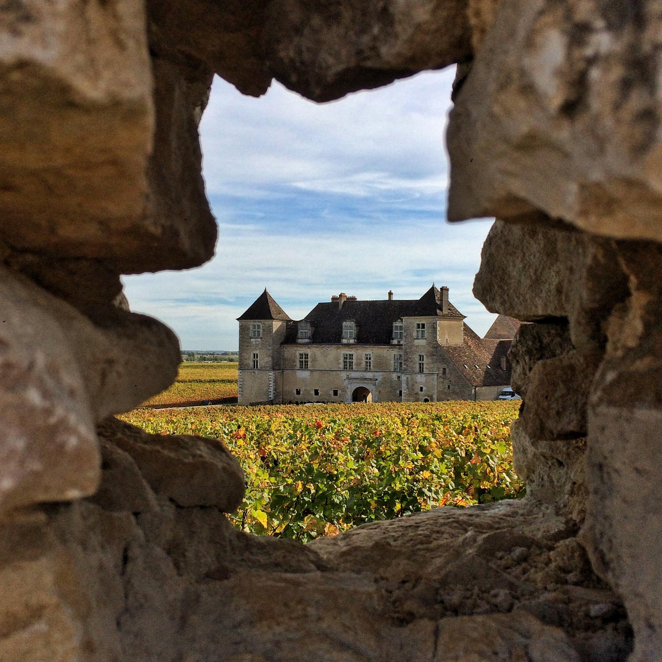 Bourgogne Automne - Mylene Fargeot oct 2017 (43)