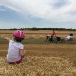 Charente-Maritime > Surgères > Coulon à vélo