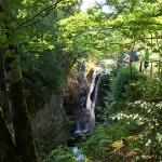 Jura – Doubs > Les gorges de la Langouette (39) et le lac de St-Point (25)