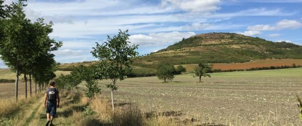 Graines de baroudeurs_Auvergne_juillet 2015 (1)
