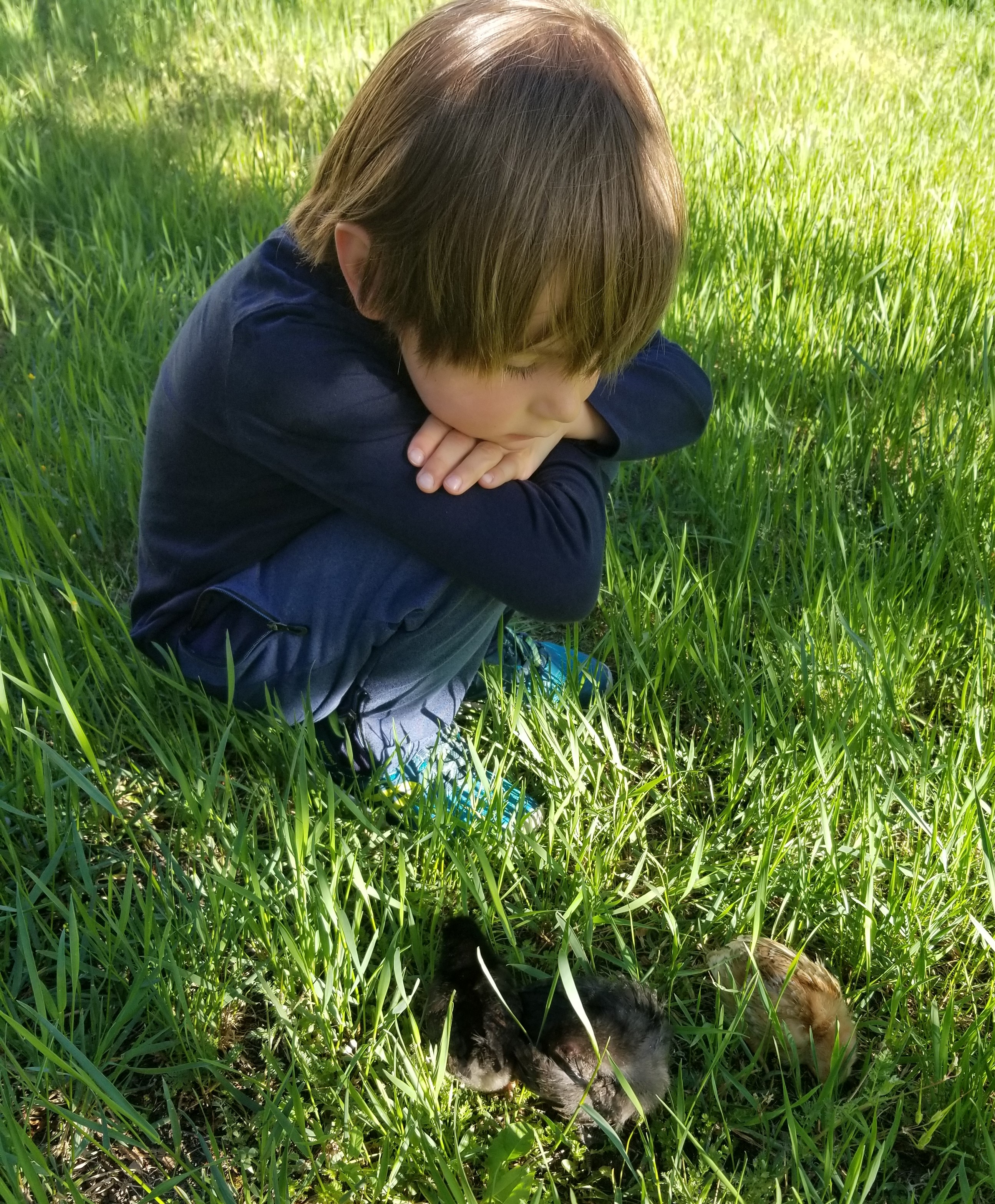 Hugo > 6 ans