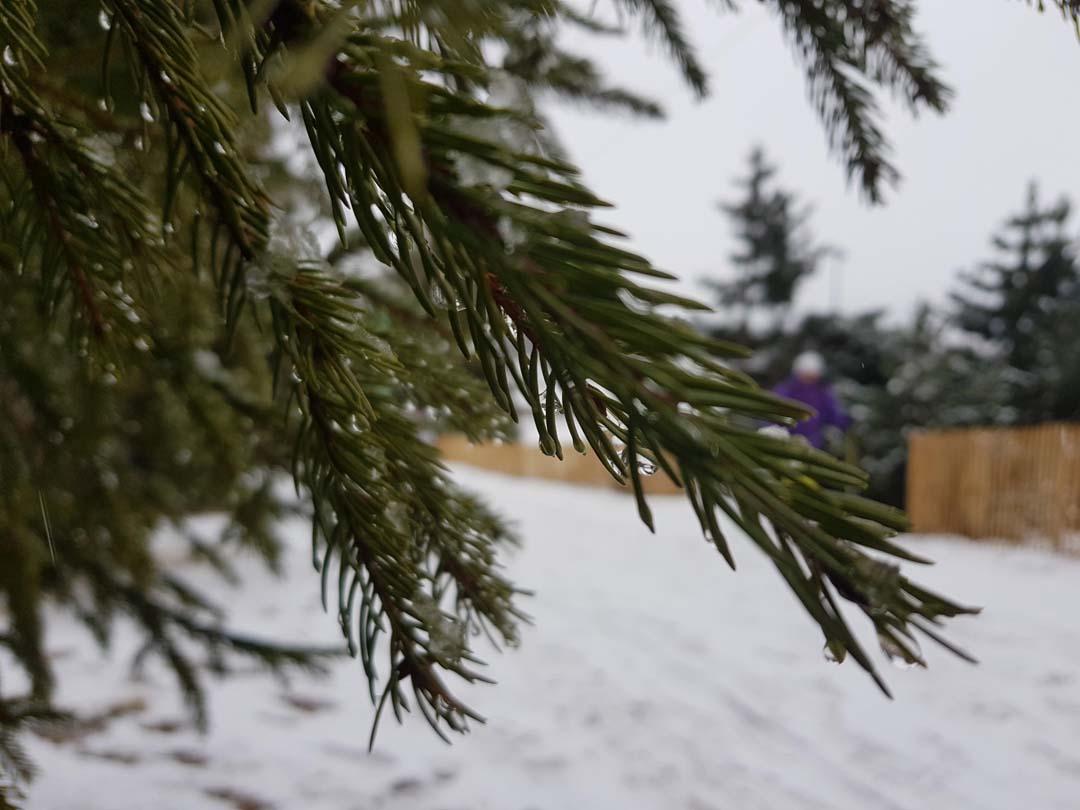 Graines De Baroudeurs_Super Besse_top 5 des activités hivernales_raquettes